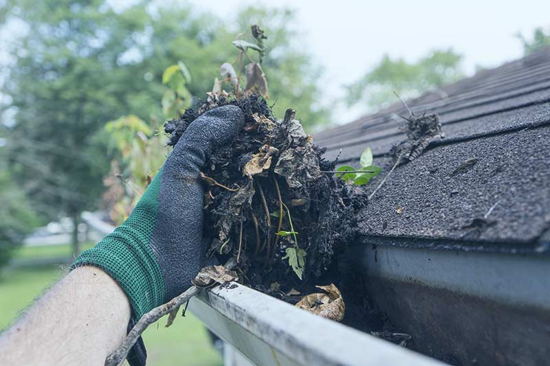 Commercial gutter clearance